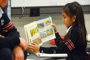 learning-in-depth-st-michael-s-elementary-school